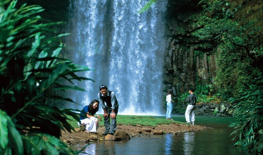 1 Day Atherthon Tablelands Tour