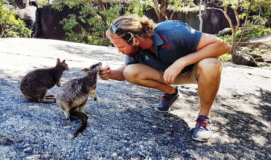 Close encounter with some rock wallabies
