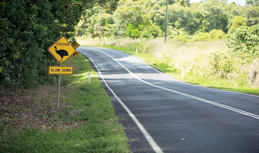 Cassowary Road Signs