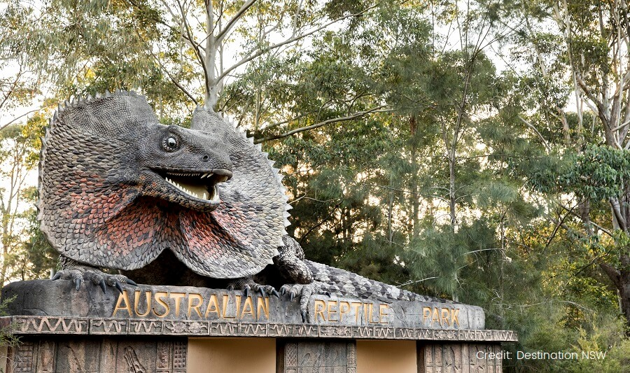 Australian Reptile Park, Somersby