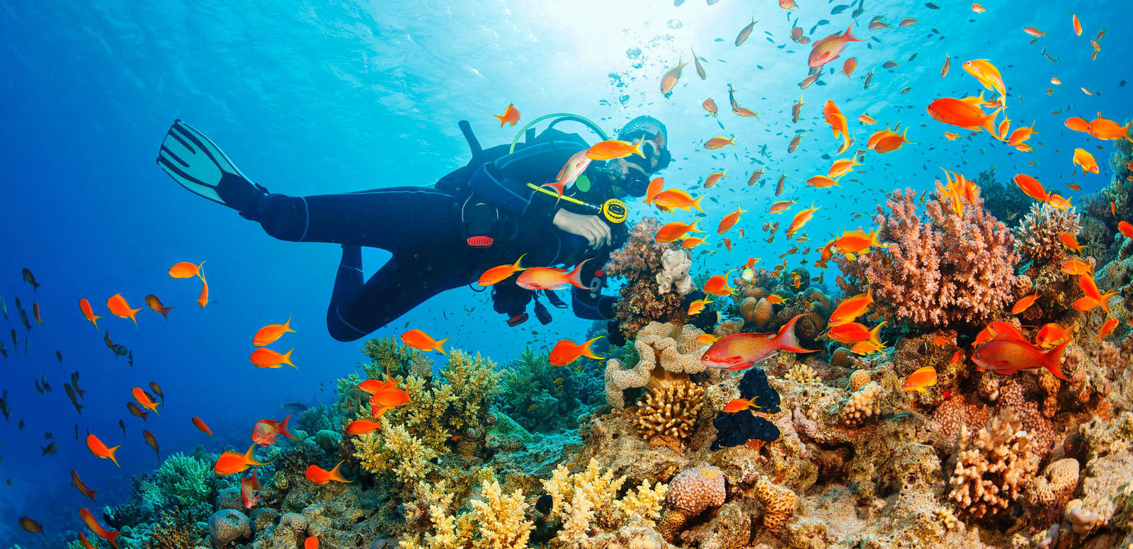 What to expect on your first scuba diving adventure?
