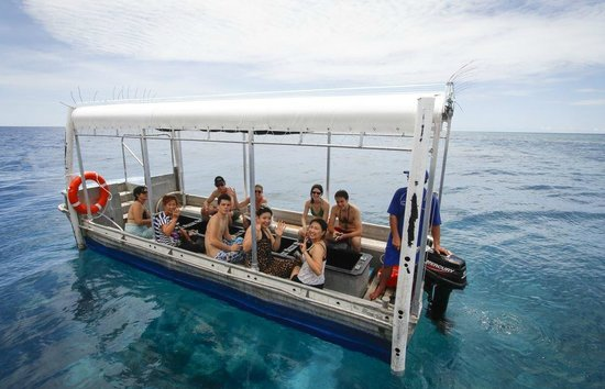 How to get to the Great Barrier Reef