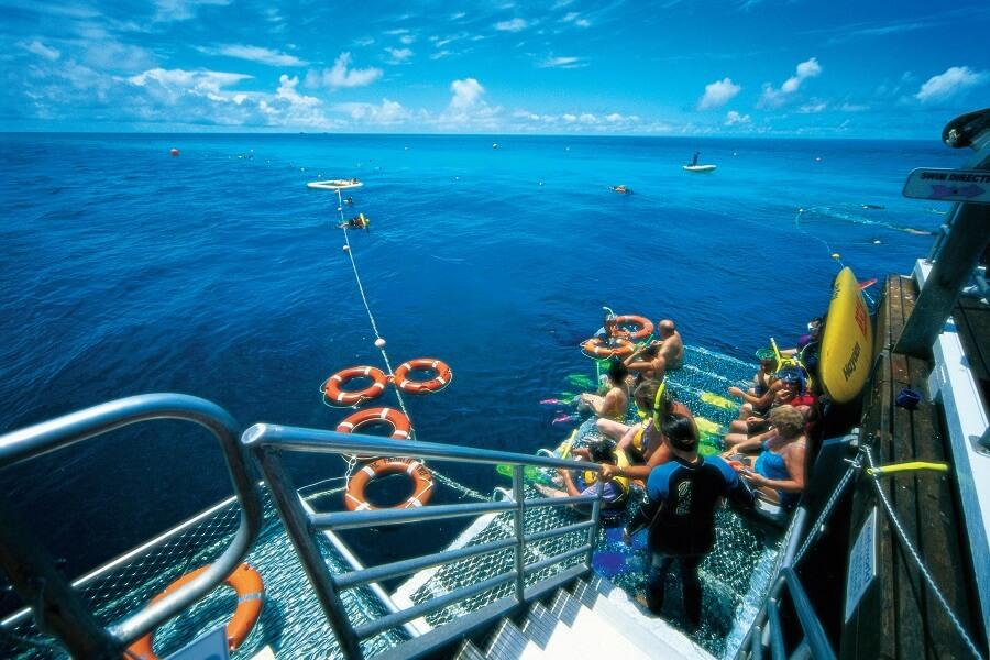Snorkelling off Pontoon