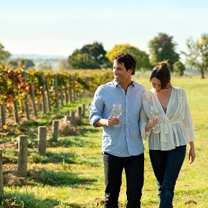 DISCOVER THE YARRA VALLEY WINE TOUR