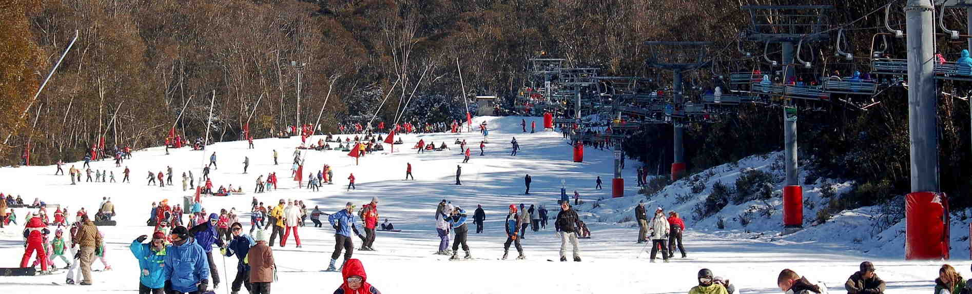 Thredbo Tours