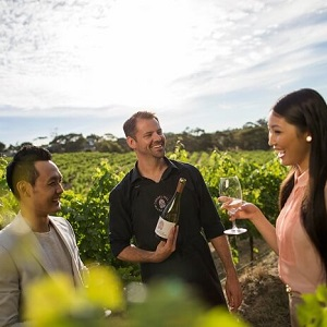 ADELAIDE HIGHLIGHTS WITH WINE TASTING & COAST TOUR